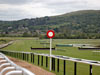 Top 5 Racecourses In The UK
